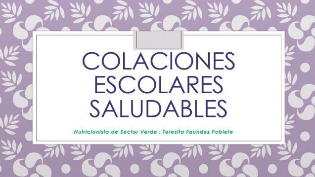 COLACIONES ESCOLARES  SALUDABLES